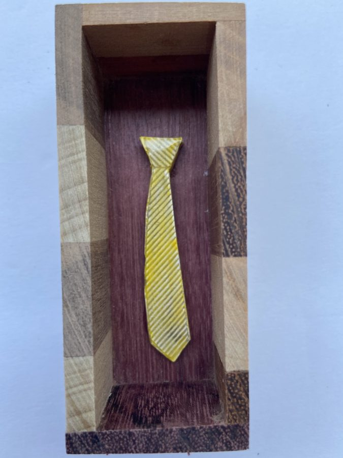 Tiny Ties in Wooden Boxes 7